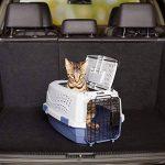 AmazonBasics Caisse de transport pour animal domestique 2portes dont 1sur le dessus 48cm de la marque AmazonBasics image 1 produit