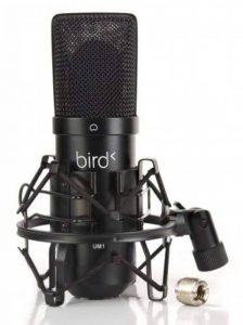 Bird UM1 Microphone USB Noir de la marque Bird image 0 produit