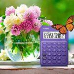 Casio MS 20UC PL Calculatrice de bureau Violet de la marque Casio image 3 produit