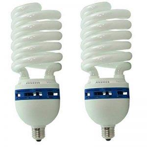DynaSun 2xsyd26 Pack de 2 Ampoules pour Studio Photo 150 W de la marque DynaSun image 0 produit