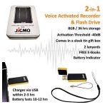 Enregistreur Audio Activation Vocale USB - Avec Indicateur de Batterie, JiGMO (Or), Capacité: 8 Go / 36 heures / Rechargeable, Mini Recorder, avec Microphone / Avec un Guide Numérique / Ne Manquez Jamais un Mot! de la marque JiGMO image 1 produit