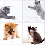 FEICHAO Jouet interactif pour chat, avec voyant LED - À attraper - Exercices et entraînement pour animaux domestiques - Rechargeable de la marque FEICHAO image 1 produit