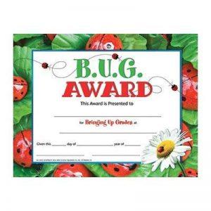 Hayes School Publishing H-VA591 Bug Prix 30 Set de la marque Flipside image 0 produit