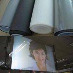Hoho Rear Projection Film adhésif Transparent holographique Vidéoprojecteur Matériau d'écran film pour fenêtre Stickers, transparent, 152cmx500cm de la marque HOHO image 1 produit
