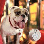 Médaille d'identification Berry personnalisable pour chiens et chats en forme de patte, 24mm, en acier inoxydable de la marque Berry image 4 produit