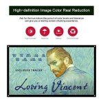 Mileagea Écran de Projection 100 Pouches 220x127cm seulement 1,5kg pour HD / 3D Film de la marque Mileagea image 1 produit