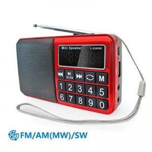 PRUNUS Radio portable FM/ MW/SW et lecteur Mp3 intégré par port USB et micro-SD (de 8 à 64 Go).Un HP en néodyme pour une très belle qualité d'écoute. Clavier du tableau de bord doté de grands boutons très lisibles. Batterie rechargeable. Stockage automati image 0 produit