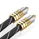 TNP Premium Plaqué Or Toslink Câble Audio numérique Optique (3Pieds) avec connecteurs en métal et Tresse pour Homme de la marque TNP Products image 1 produit